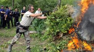 Police Burning Marijuana