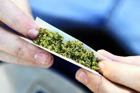 Rolling Marijuana Joint