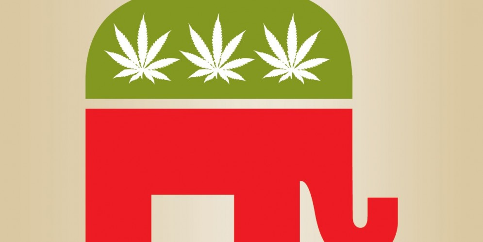 Young People Love Weed, Even the Republicans