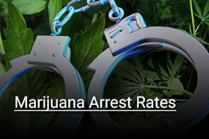 resouces_arrests_rates