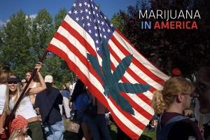 Marijuana American Flag
