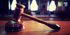 judge-marijuana-and-the-law