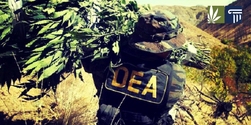 DEA-war-on-drugs