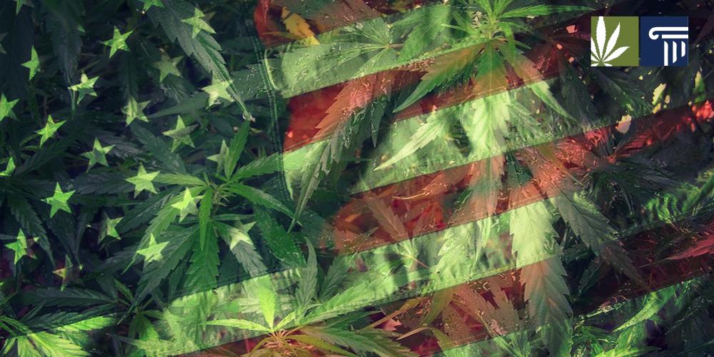 Marijuana-reform