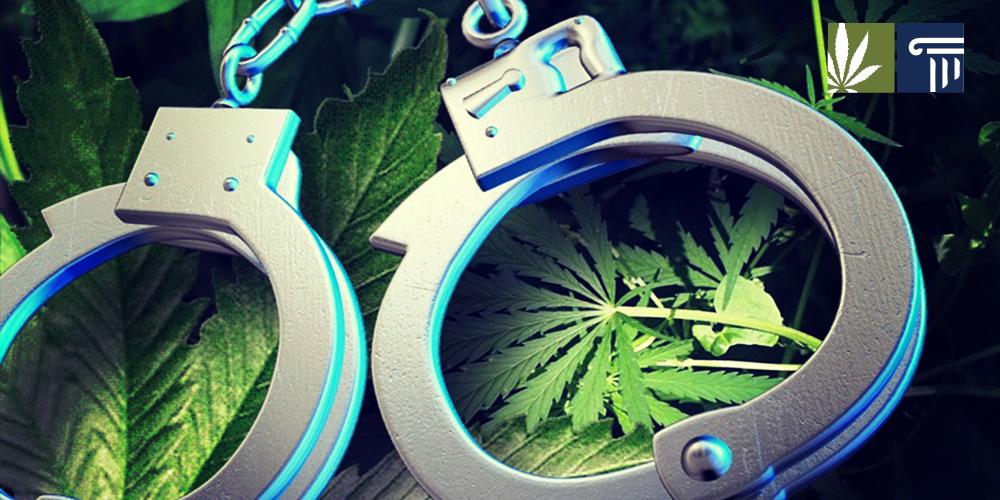 Marijuana Arrest Rate