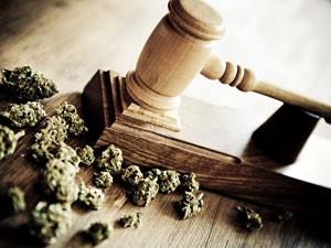 Marijuana and Gavel