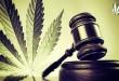 Marijuana court case