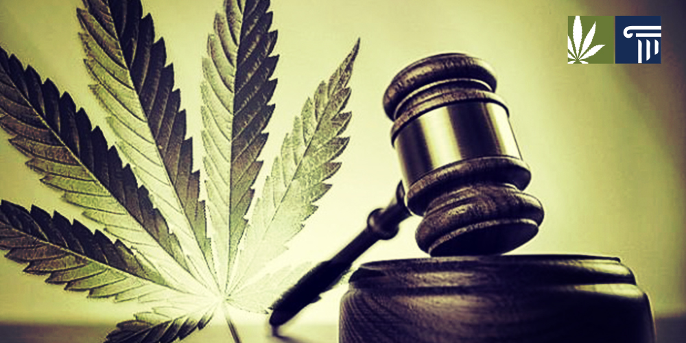 Marijuana court case