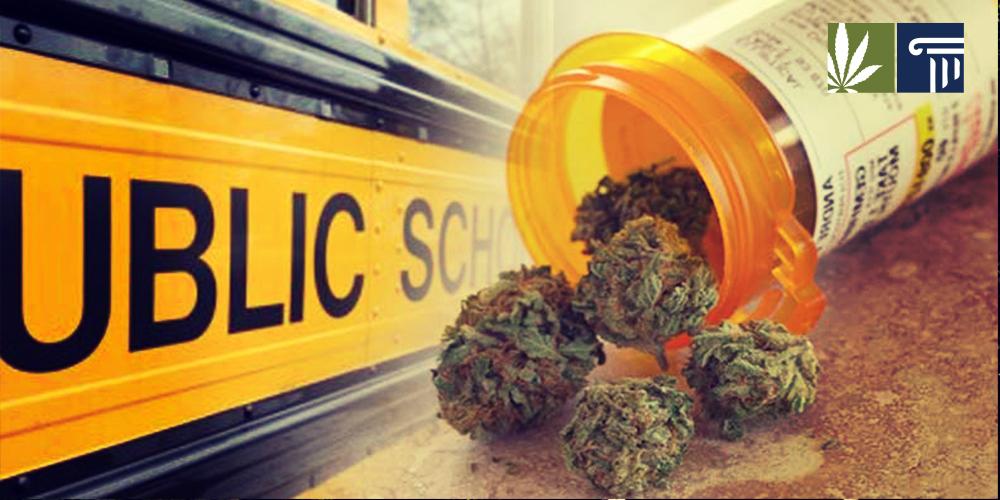 Maine marijuana at school