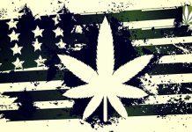 U.S. Legalization