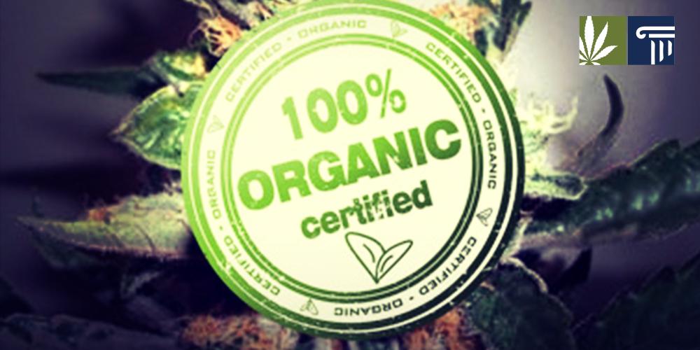 Organic Marijuana Certified