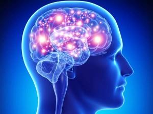 Brain, Mental Illness