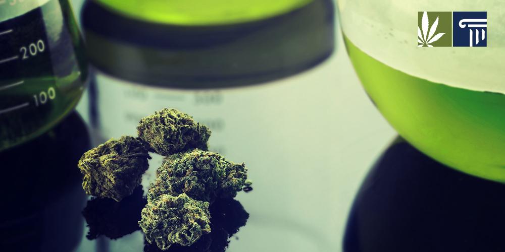 Rhode Island Department Of Health Marijuana Testing