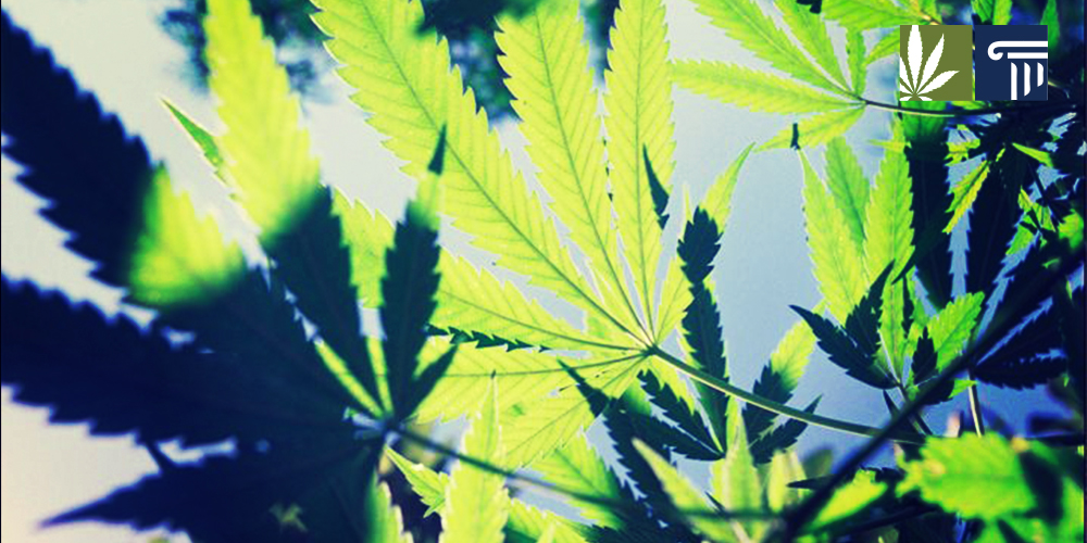 New medical marijuana bill in Ohio