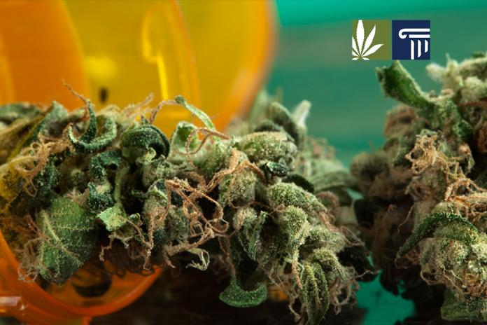 Pennsylvania Joins the Medical Marijuana Crowd2