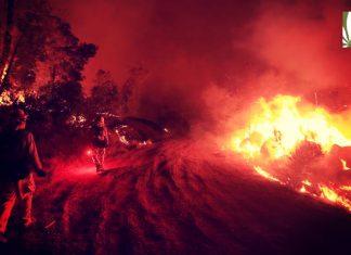 Clayton Fire, California