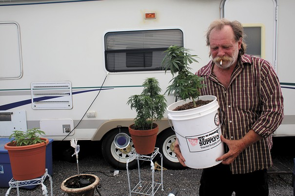 Bill Rader, 60, carries his favorite marijuana plant outside in Pueblo West to soak up the sun. Rader is a veteran from Missouri who smokes because he can't take pain pills.