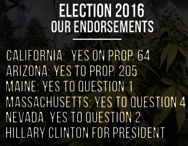 Election 2016 Endorsements