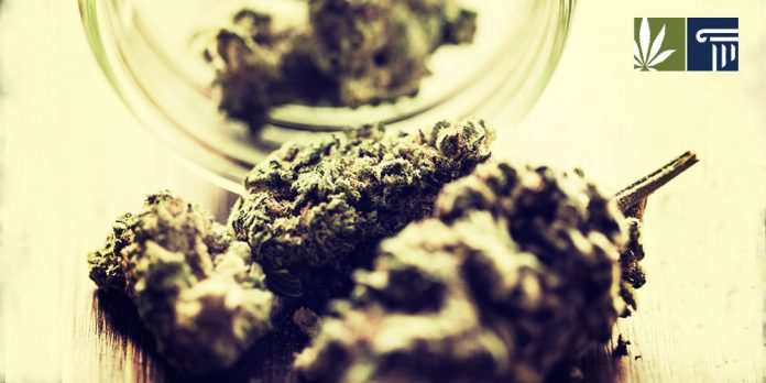 Chances of legaliaztion are looking strong in these five states