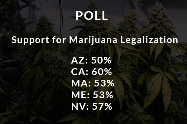 Marijuana Legalization Poll