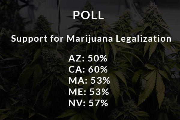 Marijuana Legalization Poll