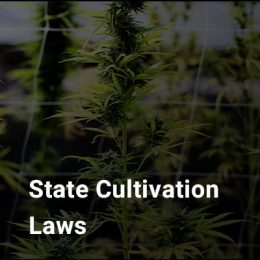 State Cultivation Laws