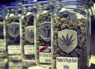 Poll americans favor legal marijuana