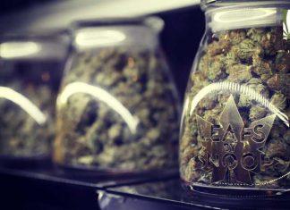 Earl Blumenauer predicts cannabis rescheduling