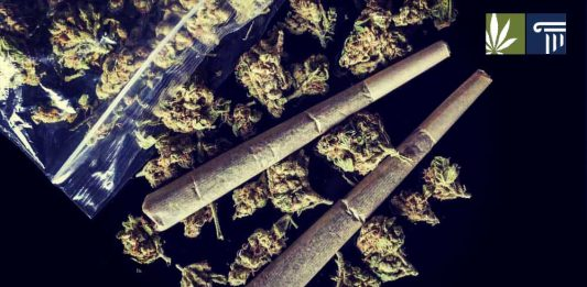 Florida ban on smokeable marijuana unconsititutional