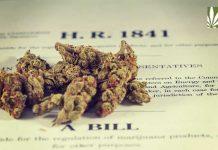 Missouri-House-votes-for-legal-marijuana