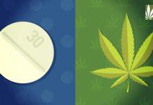 Medical marijuana reduces opioid dependancy