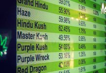 California marijuana dispensaries reducing prices