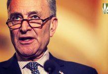 Chuck Schumer Decriminalization bill