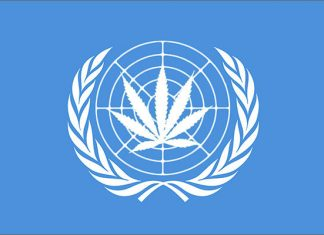 UN Cannabis is effetive and safe