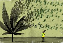 economic reasons to legalize marijuana