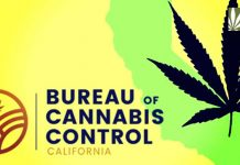 California marijuana regulations