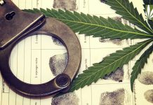 California marijuana arrests going down since legalization