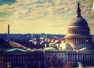 How to get marijuana in Washington DC