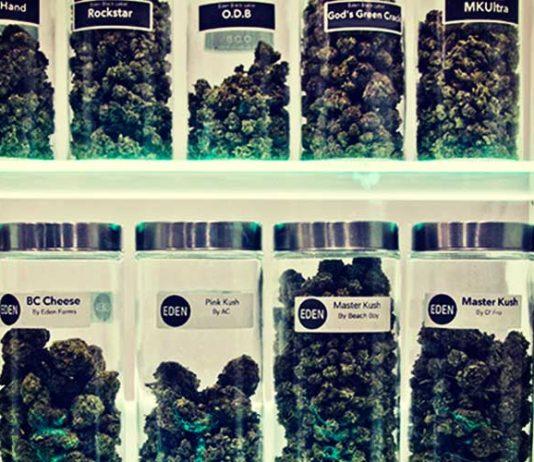 Marijuana Dispensary Massachusetts