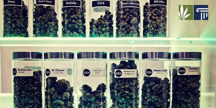 Marijuana Dispensary Massachusetts
