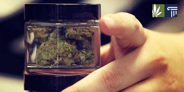 Study finds legalization reduces black market demand