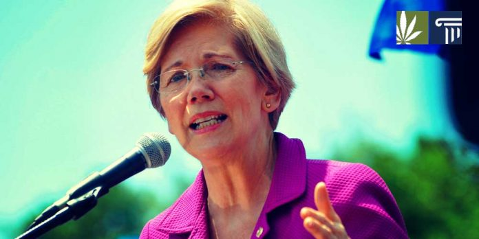 Elizabeth Warren running for president