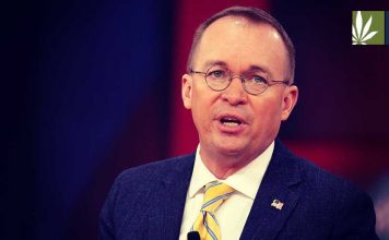Mick Mulvaney white house chief of staff