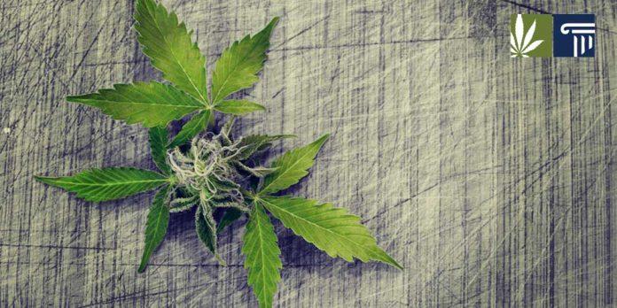 West Virginia marijuana legalization