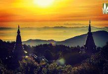 Thailand legalizes medical marijuana
