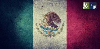 Mexico marijuana legalization