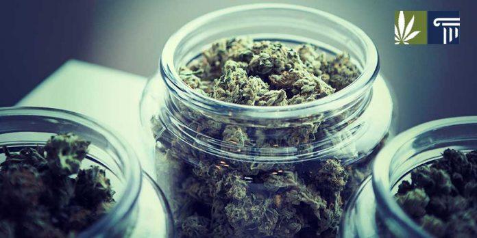 vermont retail marijuana sales