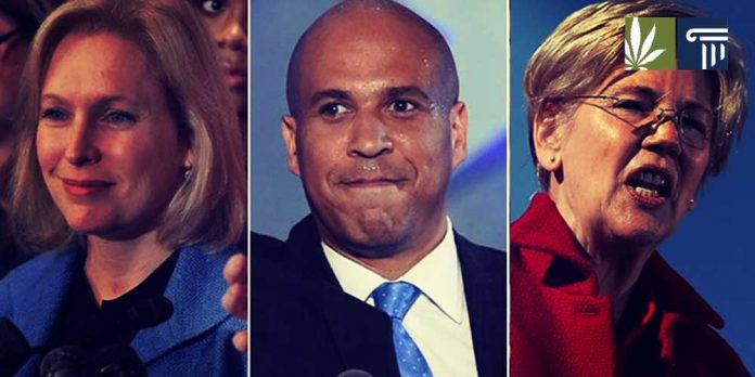2020 presidential candidates marijuana