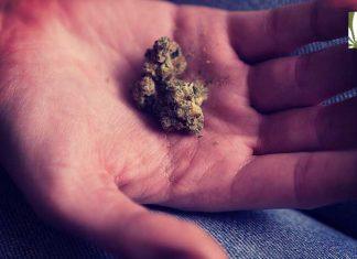 FDA public comments marijuana reclassification