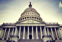 STATES Act reintroduced congress